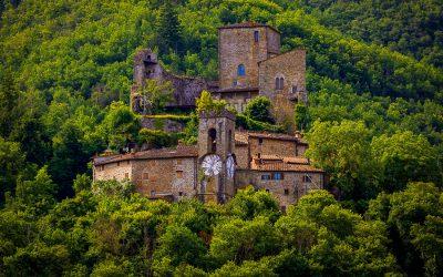 Le meraviglie millenarie delle Foreste Casentinesi